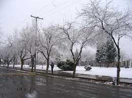 nieve7.jpg